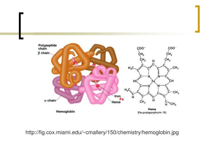 http://fig.cox.miami.edu/~cmallery/150/chemistry/hemoglobin.jpg