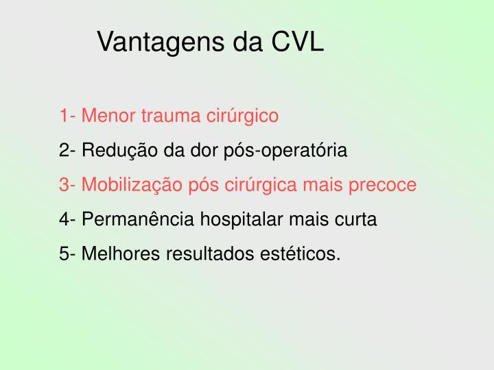 Vantagens da CVL