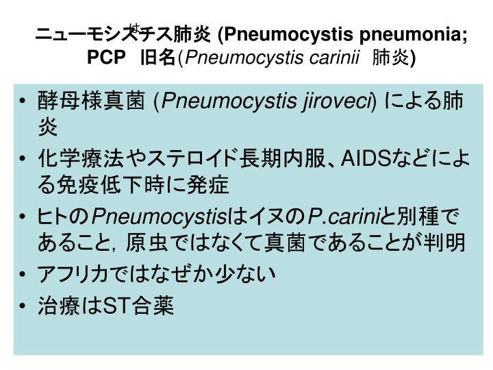 ニューモシスチス肺炎