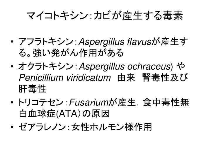マイコトキシン:カビが産生する毒素