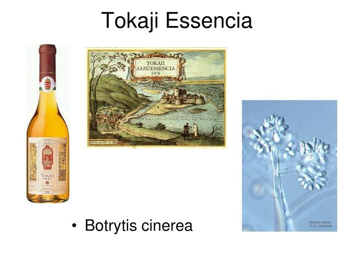 Tokaji Essencia