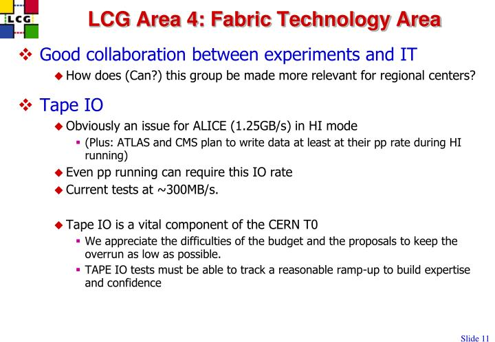 LCG Area 4: Fabric Technology Area