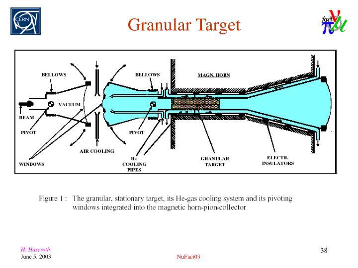 Granular Target