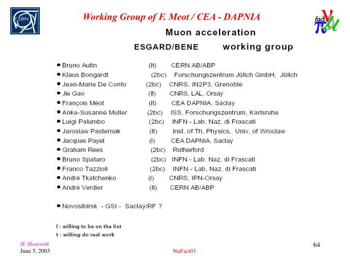 Working Group of F. Meot / CEA - DAPNIA