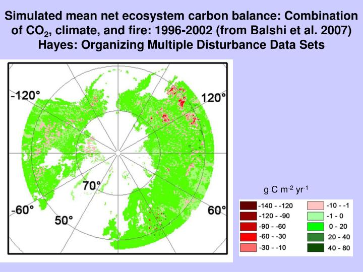 Simulated mean net ecosystem carbon balance: Combination of CO