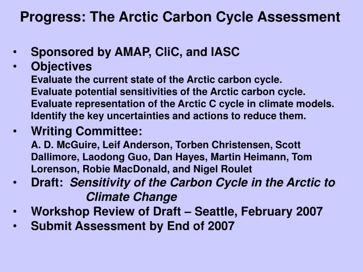 Progress: The Arctic Carbon Cycle Assessment