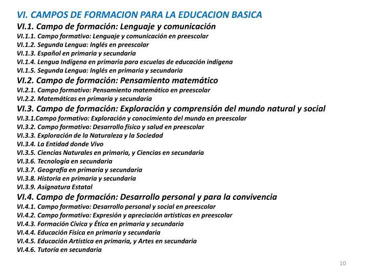 VI. CAMPOS DE FORMACION PARA LA EDUCACION BASICA