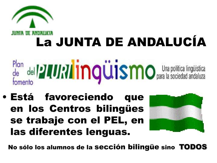 La JUNTA DE ANDALUCÍA