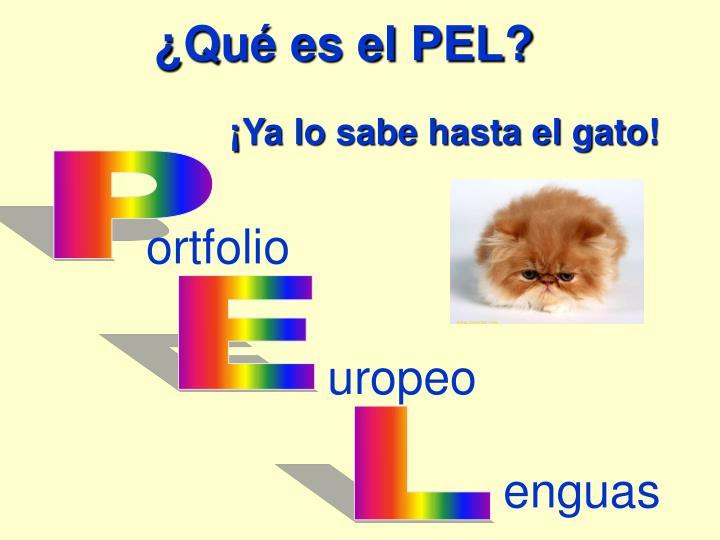 ¿Qué es el PEL?