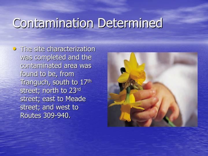 Contamination Determined