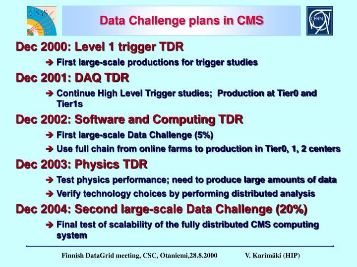 Data Challenge plans in CMS