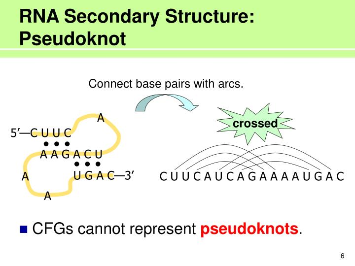 RNA Secondary Structure: