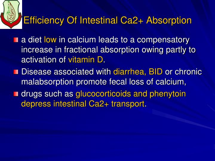 Efficiency Of Intestinal Ca2+ Absorption