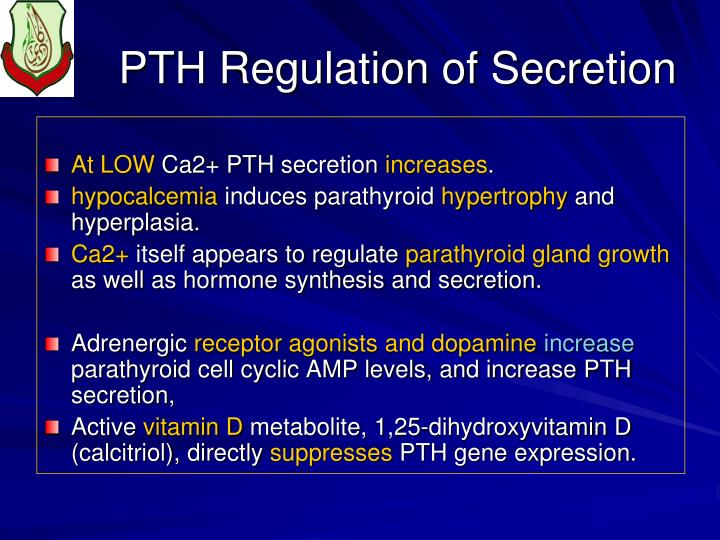 PTH Regulation of Secretion