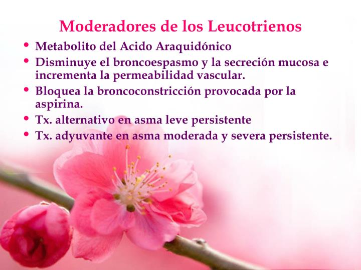Moderadores de los Leucotrienos
