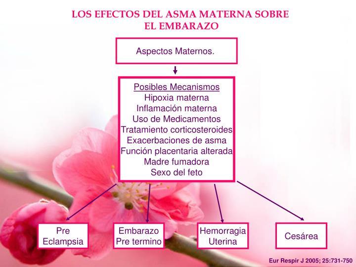 Aspectos Maternos.