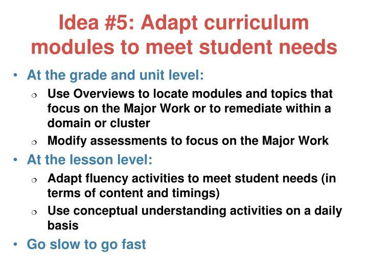 Idea #5: Adapt curriculum modules to meet student needs