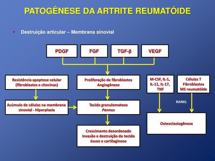 PATOGÊNESE DA ARTRITE REUMATÓIDE
