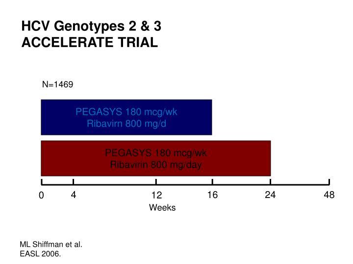 HCV Genotypes 2 & 3