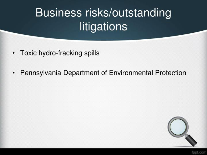 Business risks/outstanding litigations