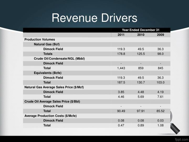Revenue Drivers