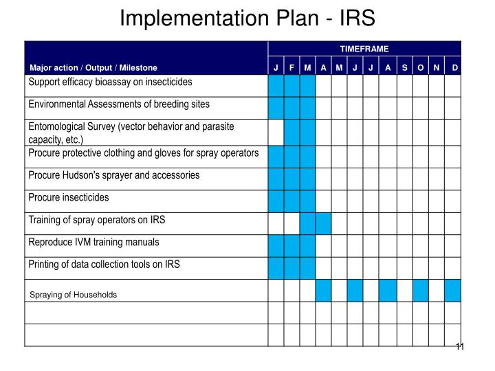 Implementation Plan - IRS