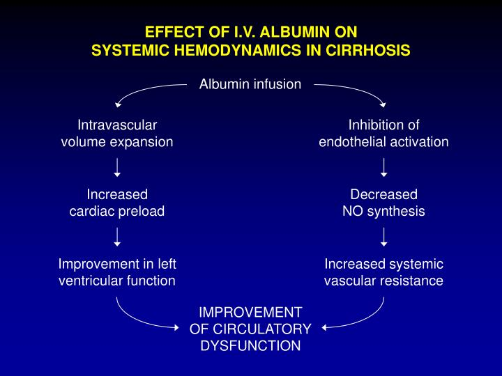 EFFECT OF I.V. ALBUMIN ON