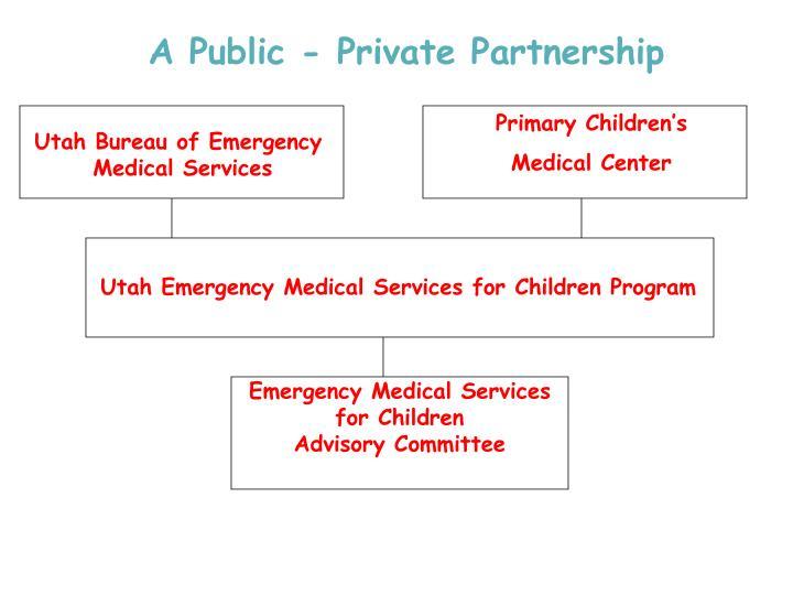 A Public - Private Partnership