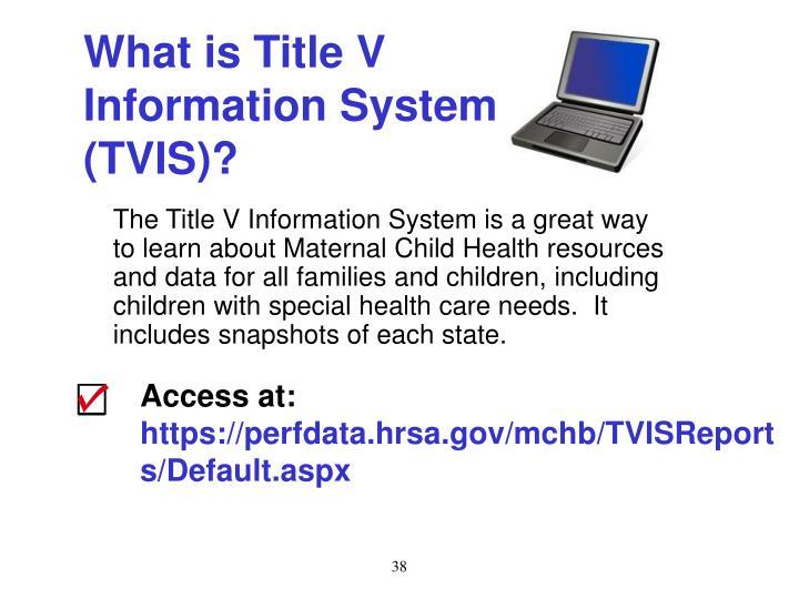 What is Title V Information System (TVIS)?
