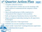 1 st quarter action plan