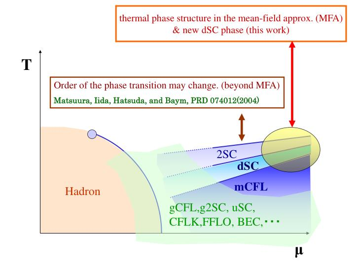 thermal phase structure in the mean-field approx. (MFA)
