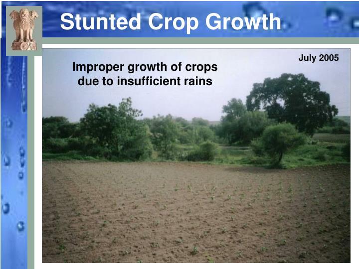 Stunted Crop Growth