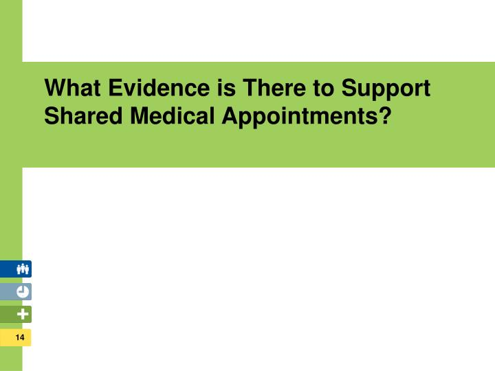 What Evidence is There to Support         Shared Medical Appointments?