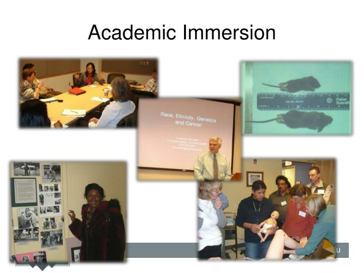 Academic Immersion