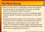 the plural society