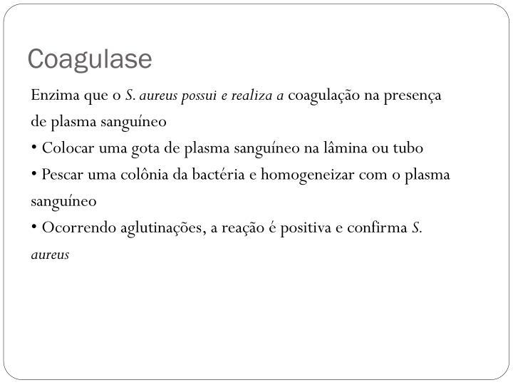 Coagulase