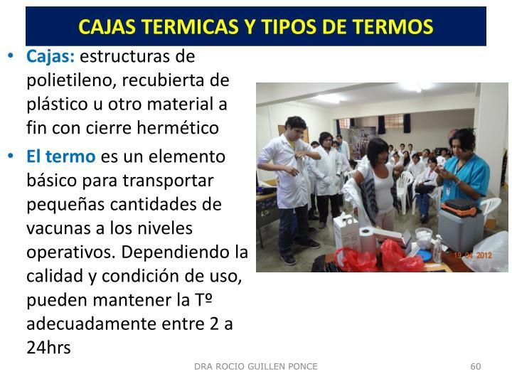 CAJAS TERMICAS Y TIPOS DE TERMOS