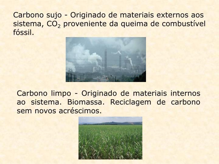 Carbono sujo - Originado de materiais externos aos sistema, CO