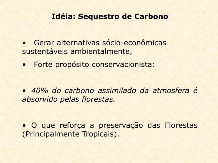 Idéia: Sequestro de Carbono
