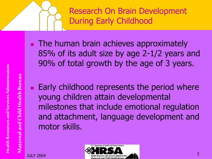 Research on brain development during early childhood