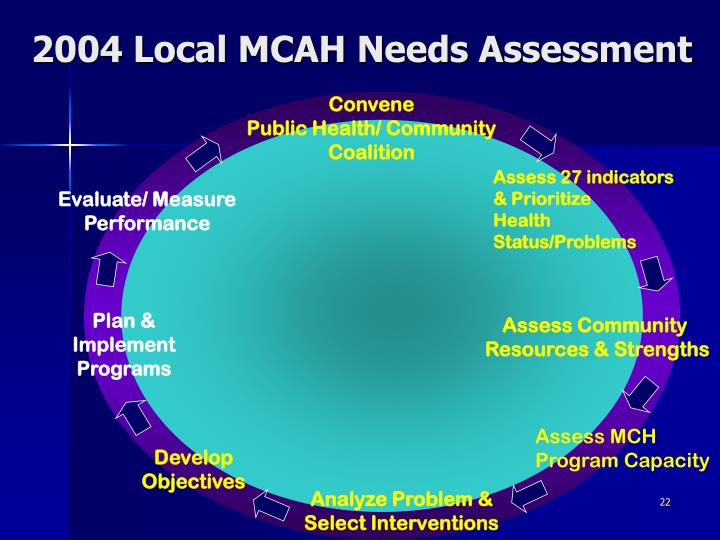 2004 Local MCAH Needs Assessment