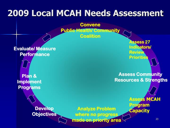 2009 Local MCAH Needs Assessment