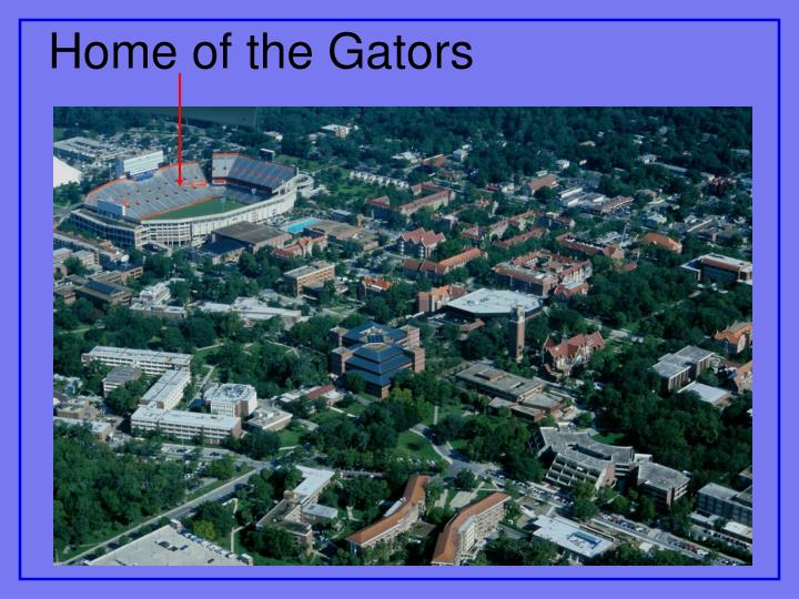 Home of the Gators