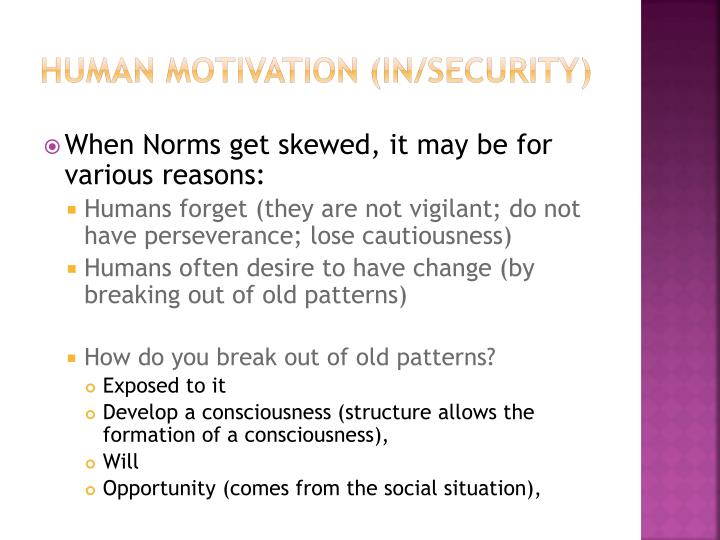 Human Motivation (in/security)