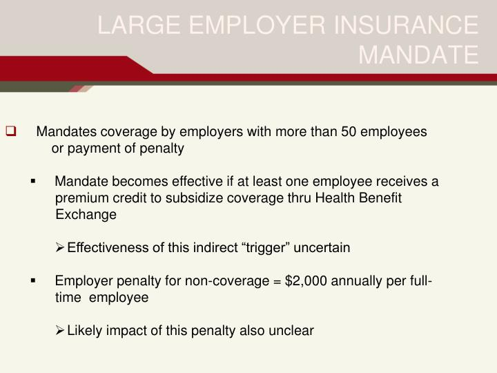 LARGE EMPLOYER INSURANCE