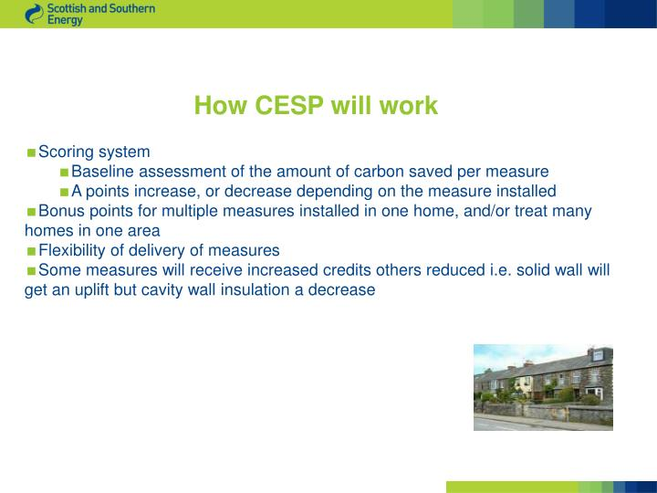 How CESP will work