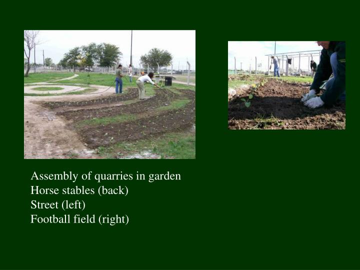 Assembly of quarries in garden