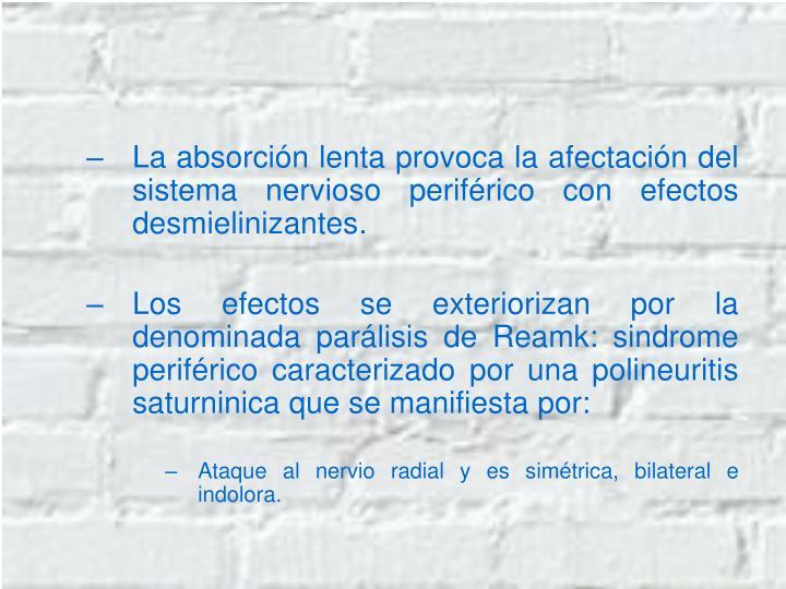 La absorción lenta provoca la afectación del sistema nervioso periférico con efectos desmielinizantes.
