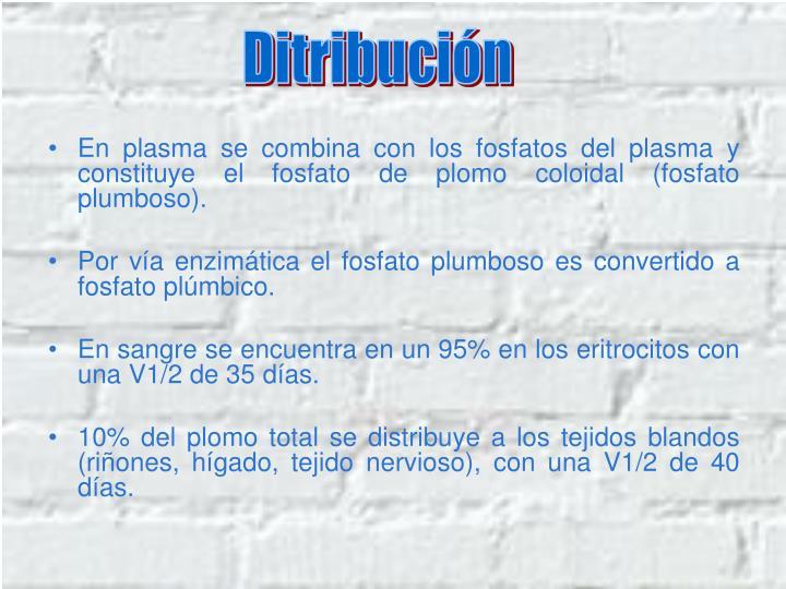 Ditribución