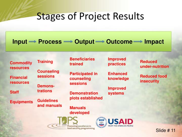 Stages of Project Results